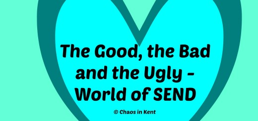 The good, bad and ugly in the SEN World
